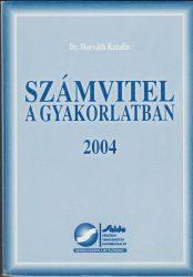 Számvitel a gyakorlatban 2004
