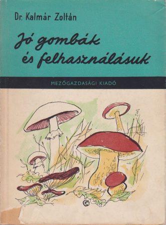 Jó gombák és felhasználásuk